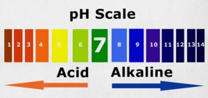 Sports drinks are acidic - pH Scale
